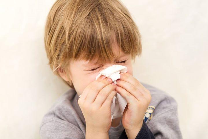 3 bài thuốc dân gian điều trị viêm xoang ở trẻ hiệu quả - Ảnh 2