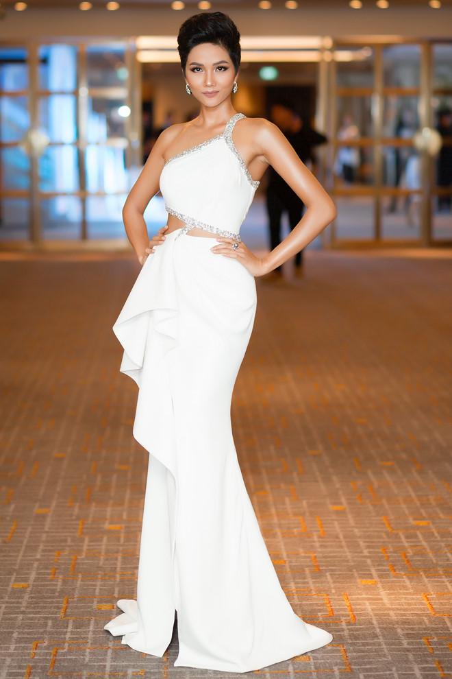12 tuyệt tác giúp H'Hen Niê từ chân dài vô danh đến Top 5 Miss Universe 2018 - Ảnh 6