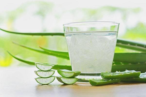 nước ép nha đam có khả năng kích thích sản xuất hormone testosterone ở cả hai giới.