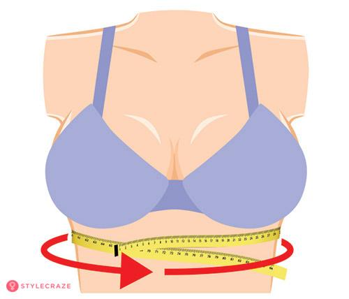 Đo vòng lưng (vòng chân ngực hay còn gọi là brand size) rồi ghi lại