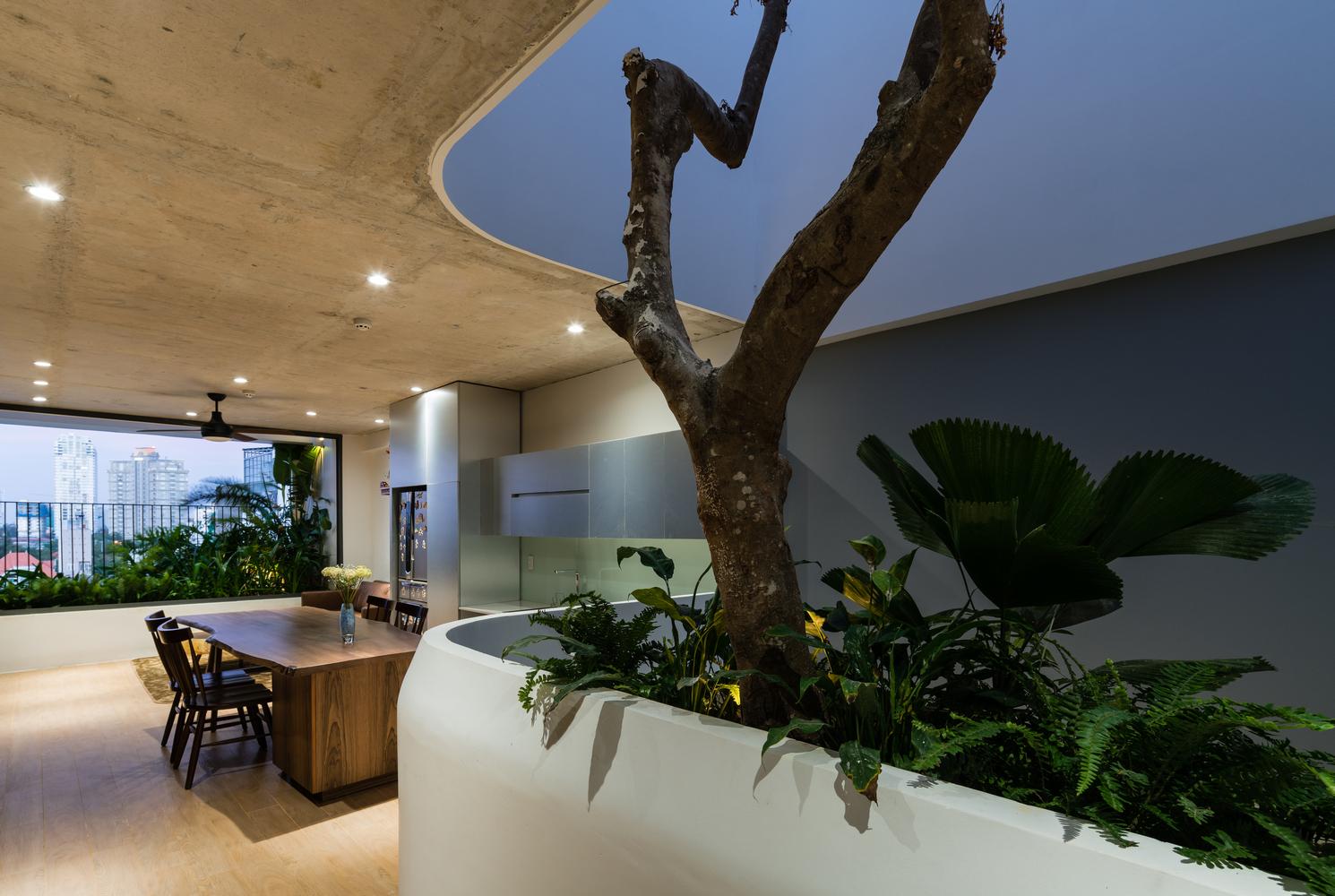 Nhà cho thuê căng tràn ánh sáng tự nhiên 'ai cũng muốn ở' tại Vũng Tàu  - Ảnh 4