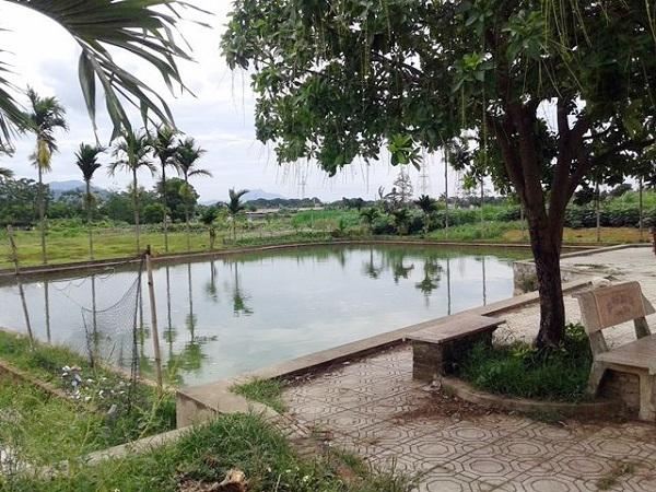 Mẹ ngất lịm khi 2 con tử vong thương tâm ở bể bơi giếng làng - Ảnh 1