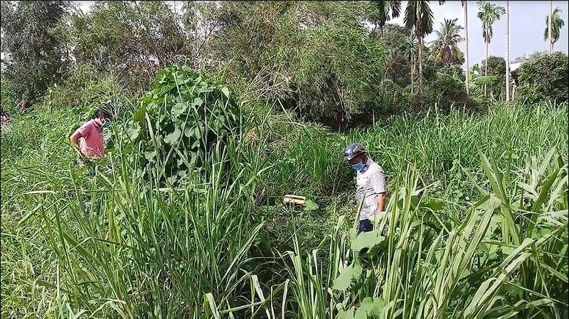 Đi cắt cỏ tá hỏa phát hiện xác người đang phân hủy - Ảnh 2