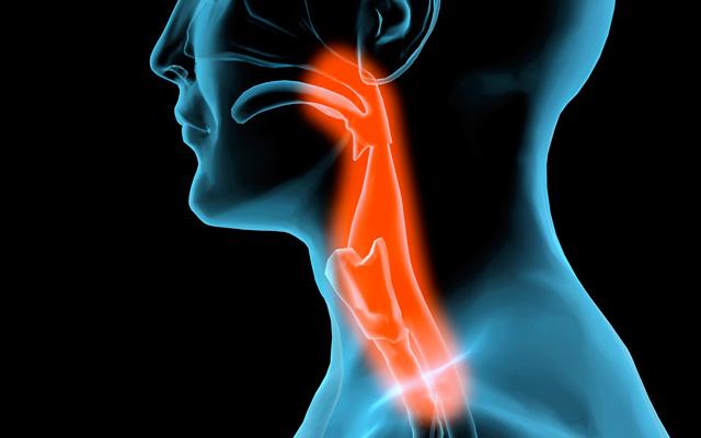 Yêu bằng miệng có thể rước bệnh ung thư - Ảnh 2