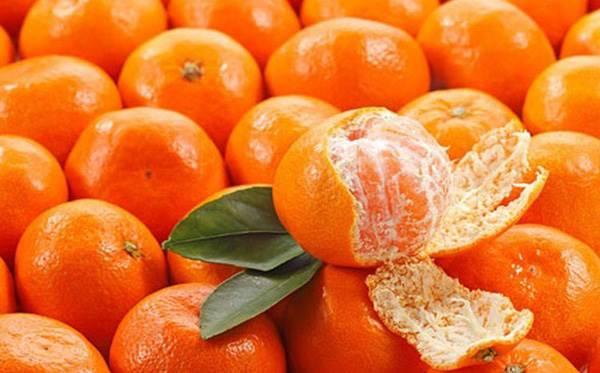 Việt Nam không thiếu loại quả 'ngọc màu vàng' và ăn 1 quả bằng uống 5 vị thuốc bổ - Ảnh 1