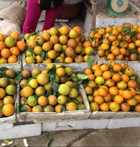 Hoa quả Trung Quốc nhiễm độc tràn lan thị trường Việt dịp cuối năm - Ảnh 1