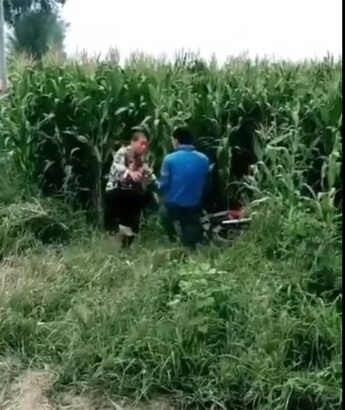 Hài hước hy hữu: Đang mây mưa trong ruộng ngô, cặp đôi bị xe máy va chạm giao thông tông vào phá đám - Ảnh 2
