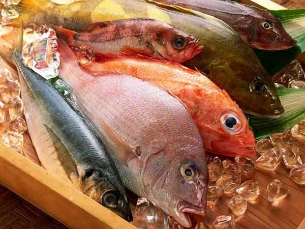 Không ăn cá có hàm lượng thủy ngân cao