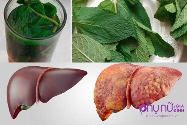 Đây là 'tiên dược' thải độc và phục hồi gan hư tổn cấp tốc trong 1 tuần - Ảnh 1