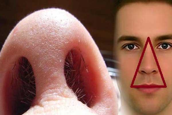 Những tác hại khủng khiếp của việc nhổ lông mũi khiến ai cũng phải rùng mình - Ảnh 2
