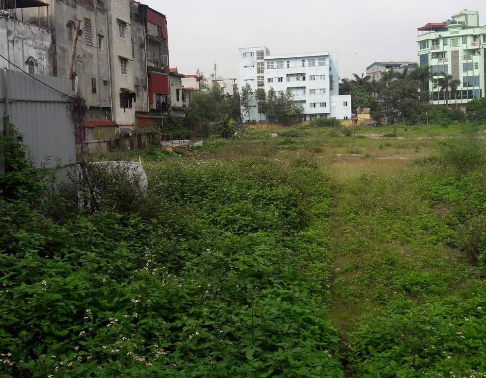 Dự án khu nhà ở Binh đoàn 12: Góp vốn trăm triệu, 10 năm vẫn là bãi đất trống - Ảnh 2