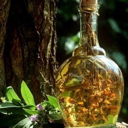 Rượu thuốc chữa đau lưng, tăng cường sinh lực - Ảnh 1