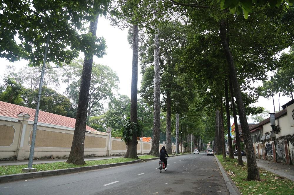 Đường phố Sài Gòn vắng xe, yên bình ngày đầu năm mới 2019 - Ảnh 5