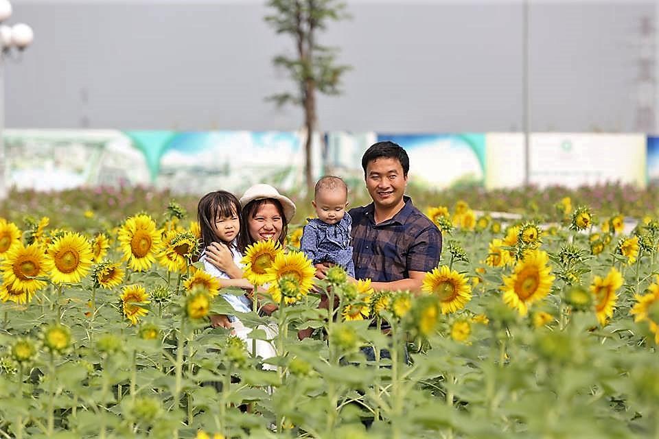 Nếu cuối tuần không di du lịch, cả gia đình bạn nên đến cánh đồng hoa hướng dương tuyệt đẹp giữa Sài Gòn chụp ảnh  - Ảnh 6