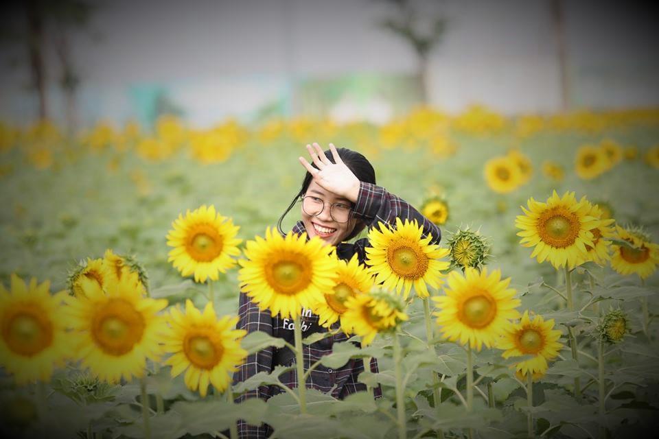 Nếu cuối tuần không di du lịch, cả gia đình bạn nên đến cánh đồng hoa hướng dương tuyệt đẹp giữa Sài Gòn chụp ảnh  - Ảnh 4