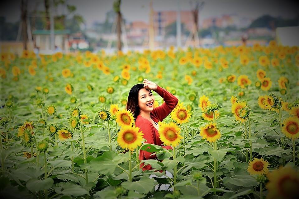 Nếu cuối tuần không di du lịch, cả gia đình bạn nên đến cánh đồng hoa hướng dương tuyệt đẹp giữa Sài Gòn chụp ảnh  - Ảnh 9