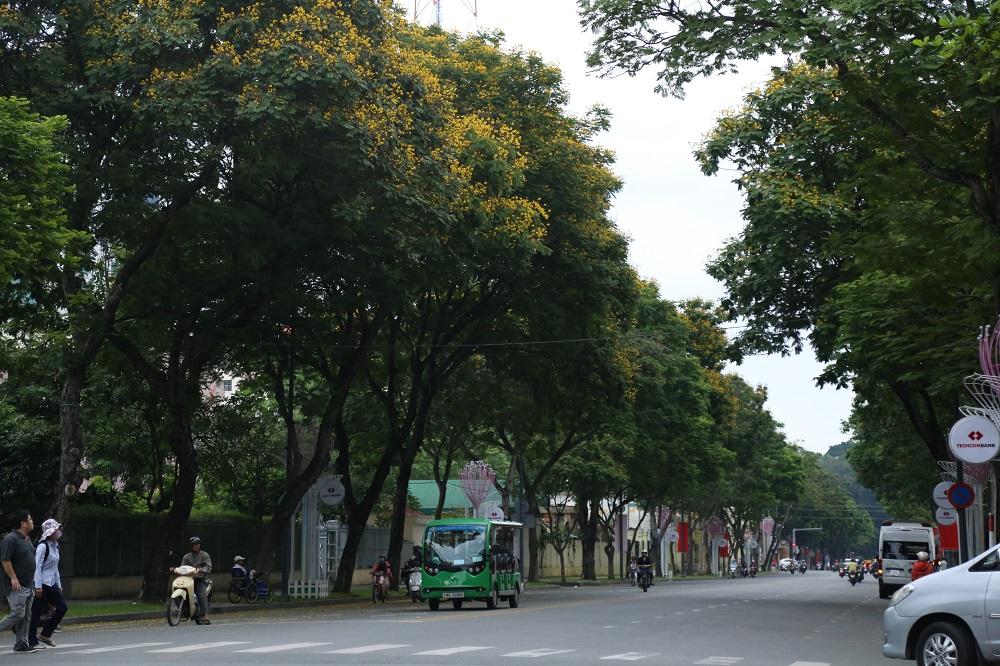 Đường phố Sài Gòn vắng xe, yên bình ngày đầu năm mới 2019 - Ảnh 4