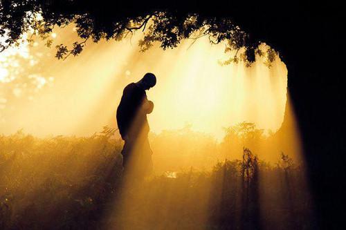 Phật dạy: Giữa cha mẹ và con cái luôn có mối duyên nợ ngàn năm không dứt - Ảnh 2