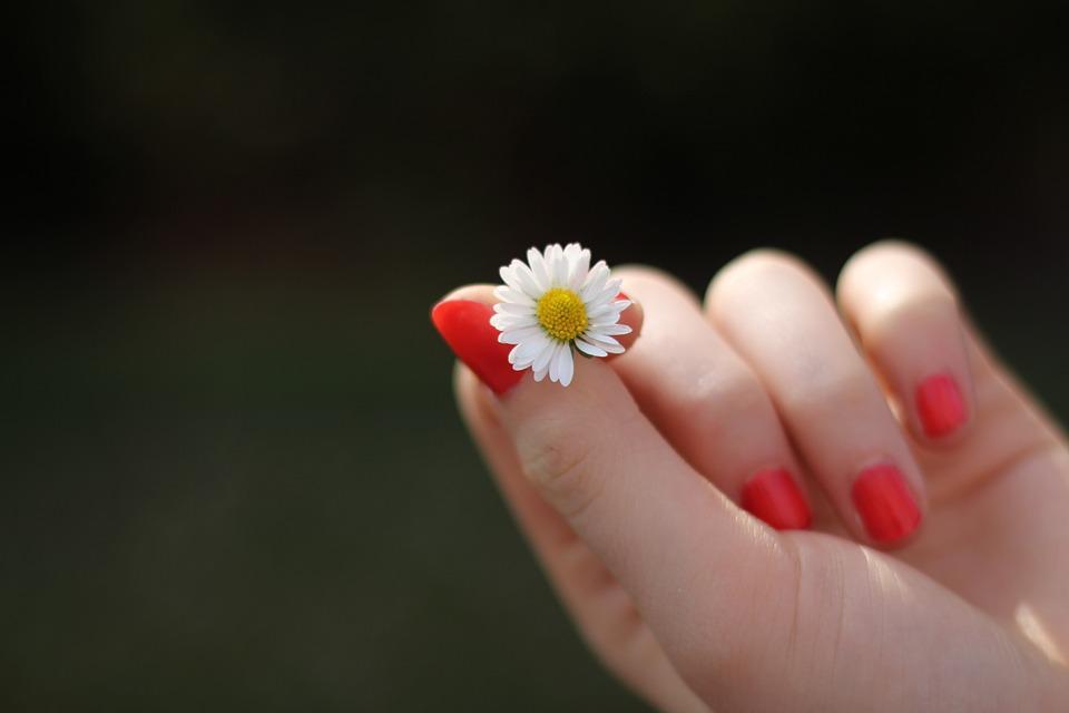 Phụ nữ có những điểm này ở tay, vận mệnh sau này SÁNG HƠN SAO - Ảnh 1