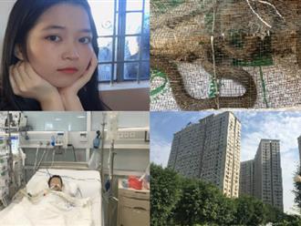"""""""Nóng"""" nhất tuần qua: Rắn độc bủa vây chung cư mới ở Hà Nội, bé 27 tháng tuổi nguy kịch nguy kịch vì tự ý dùng thuốc"""