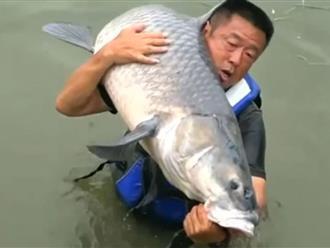 Thấy cần câu vít cong như sắp gãy, người đàn ông lao xuống sông rồi sững sờ khi thấy... 'thủy quái' siêu to khổng lồ