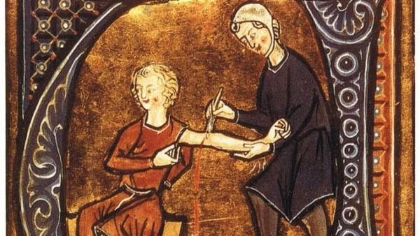 Liệu pháp dùng đỉa chữa bệnh trong y học cổ truyền - Ảnh 1