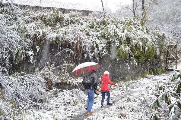 Dự báo thời tiết 1/1/2019: Miền Bắc mừng Tết Dương lịch trong rét hại, vùng núi có băng giá - Ảnh 1