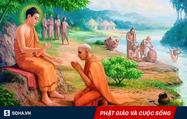 Làm sao để có cuộc sống an lành? và câu trả lời của Đức Phật, nằm trong chỉ 1 hình ảnh! - Ảnh 1
