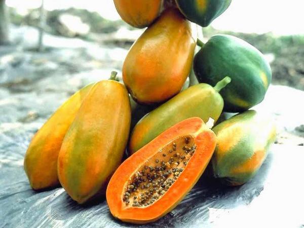 Mùa hè có đủ các loại hoa quả mẹ nên ăn để bầu khỏe re, con lại thông minh - Ảnh 3