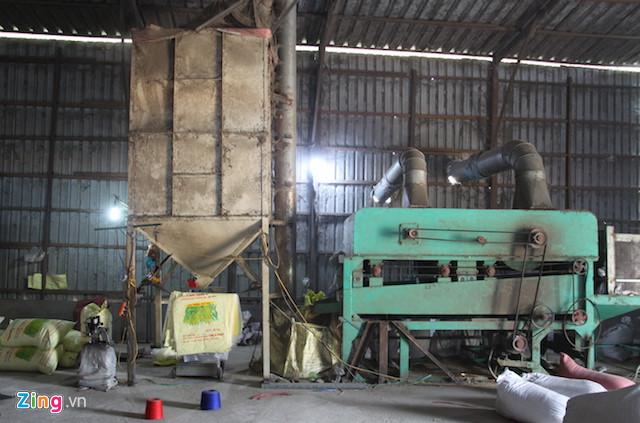 Phát hiện vụ giả nhãn hiệu hơn 1.000 tấn lúa giống - Ảnh 1