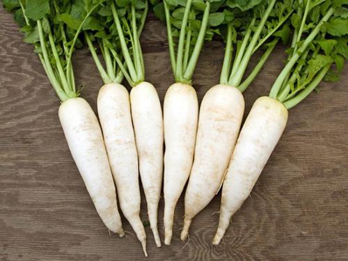 Củ cải trắng: Lợi ích từ làm đẹp đến chữa bệnh - Ảnh 1