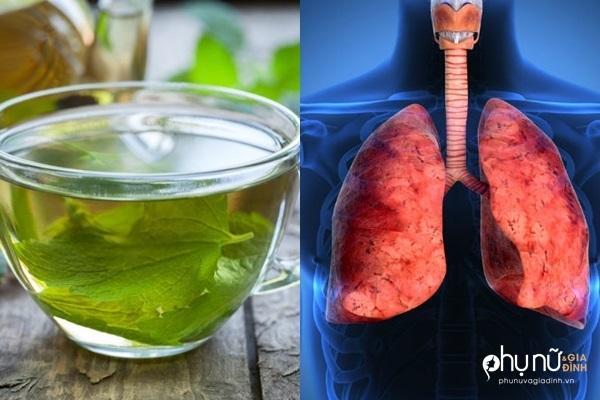 'Tiên dược' cho phổi: Trị ho, viêm phổi, viêm phế quản, hen suyễn thần tốc không cần thuốc - Ảnh 1