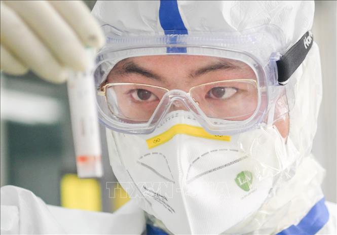 Các nhà khoa học tìm ra điểm yếu của virus SARS-CoV-2 - Ảnh 1