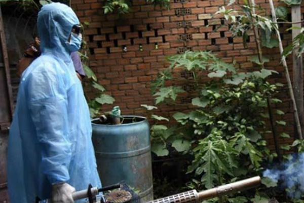 Đồng Nai: Một phụ nữ tử vong do bị sốt xuất huyết - Ảnh 1