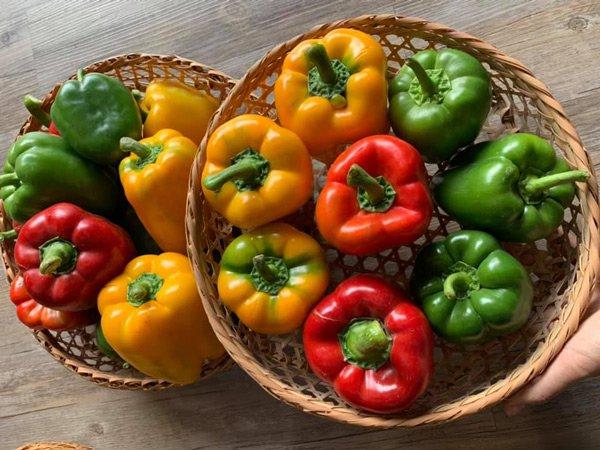 Ăn rau hàng ngày nhưng chẳng mấy ai biết 10 điều này làm lãng phí dinh dưỡng, hại chính mình - Ảnh 2