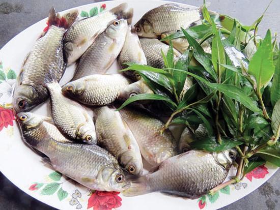 Những thực phẩm quen thuộc nhưng 'đại kị' cần tránh ăn cùng kẻo mang thêm bệnh vào người - Ảnh 1