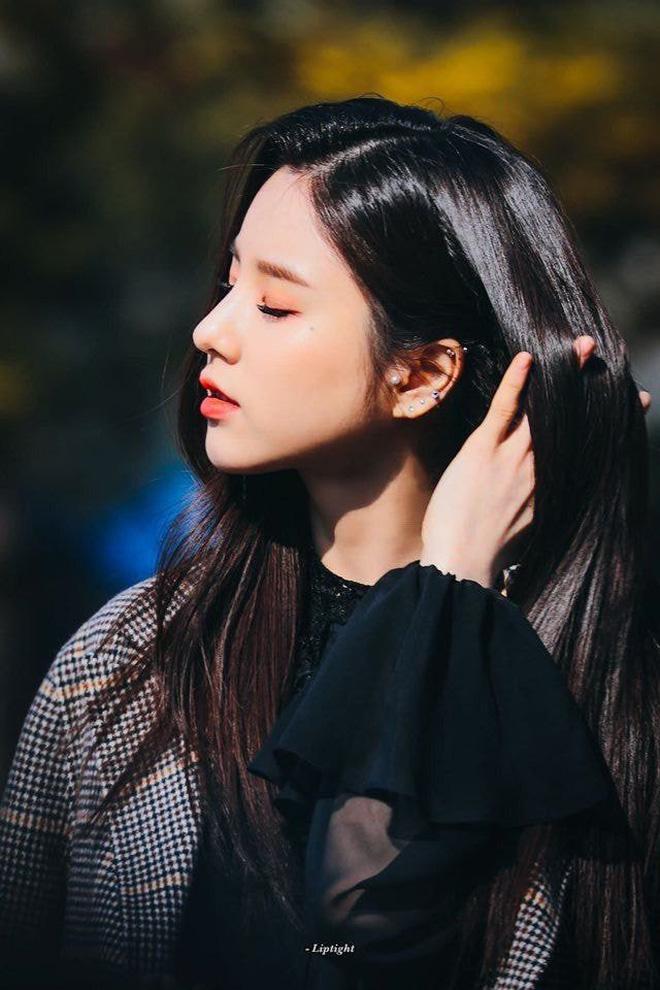 Top 7 idol nữ sở hữu chiếc mũi cao tự nhiên nhất: Jisoo với góc nghiêng xuất sắc nhưng phải chịu thua vẻ đẹp của người này - Ảnh 20