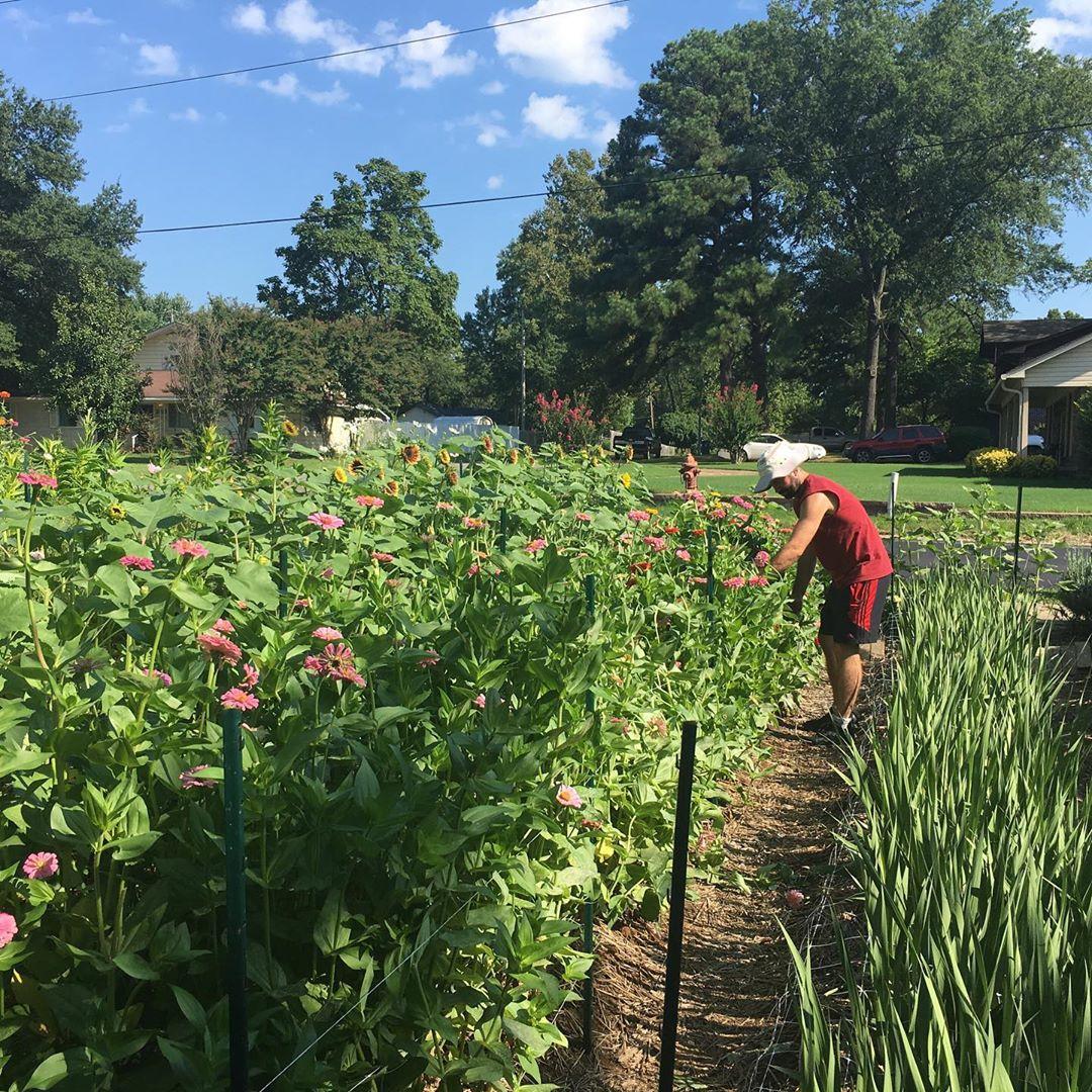 Cô gái trẻ trồng cả vườn rau và hoa theo phương pháp hữu cơ vì yêu thích sống trong không gian xanh - Ảnh 14