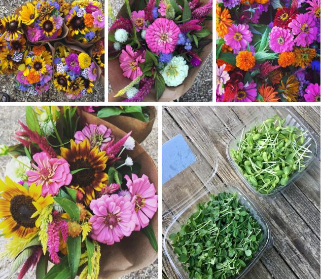 Cô gái trẻ trồng cả vườn rau và hoa theo phương pháp hữu cơ vì yêu thích sống trong không gian xanh - Ảnh 15