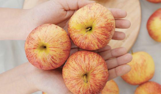 Những mẹo bảo quản rau củ quả để nhiều ngày chẳng hỏng, đỡ tốn công đi mua - Ảnh 6