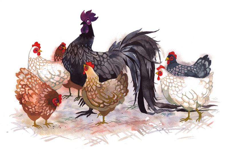 Xin chúc mừng 3 con giáp nhận nhiều PHÚC BÁO, kiếm tiền cực nhiều giữa tháng Chạp, TẾT NÀY ẤM NO - Ảnh 1
