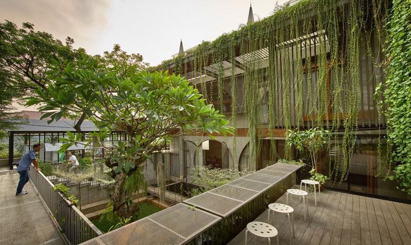 Ngôi nhà phủ kín cây xanh như bước ra từ câu chuyện cổ tích - Ảnh 2