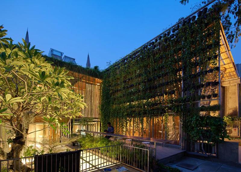 Ngôi nhà phủ kín cây xanh như bước ra từ câu chuyện cổ tích - Ảnh 5