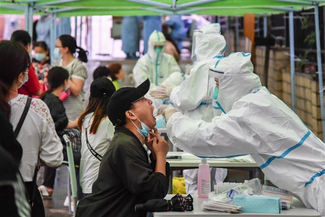 Diễn biến COVID-19 tới 6 giờ sáng 20/5: Thế giới gần 5 triệu người mắc bệnh, Brazil nguy cơ 'vỡ trận' - Ảnh 9