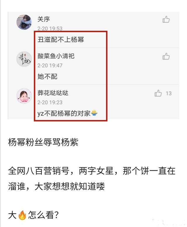 Netizen Trung đe dọa tẩy chay nếu Dương Mịch dùng chiêu trò xấu 'hãm hại' Dương Tử - Ảnh 4