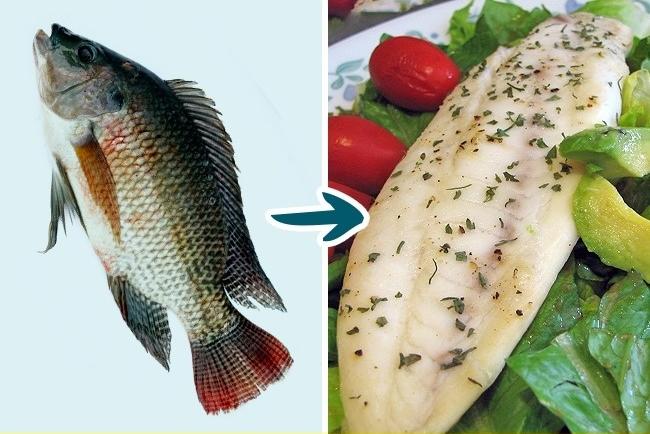 Cá tốt cho sức khỏe nhưng 3 loại cá này ăn nhiều chẳng khác nào rước bệnh vào thân, nhất là loại đầu tiên nhà nào cũng từng ăn - Ảnh 1