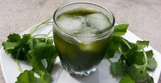 4 quan điểm sai lầm khi uống nước ép rau má gây lạnh bụng, dễ ngộ độc - Ảnh 2