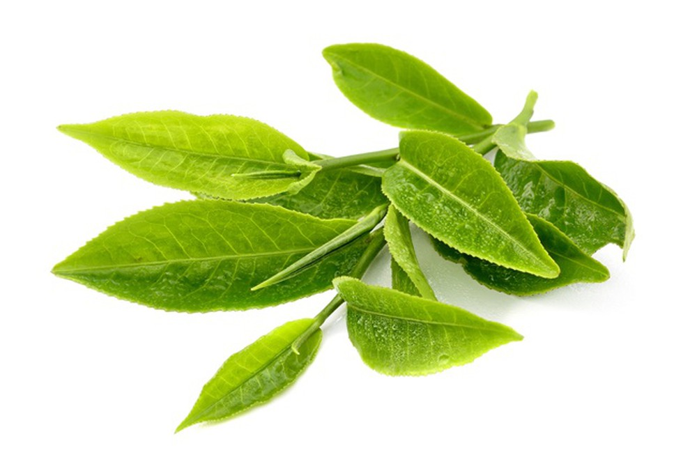 Bà bầu uống trà xanh cần biết những điều này để an toàn cho mẹ và con - Ảnh 4
