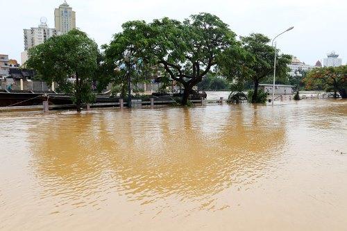 Quảng Ninh: Mưa lũ lớn, một người mất tích, người dân đảo lộn cuộc sống vì ngập sâu - Ảnh 2