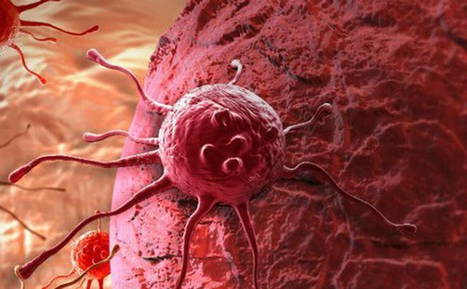 Vì sao tế bào ung thư lan nhanh bất thường? - Ảnh 1